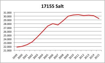 Salt INE