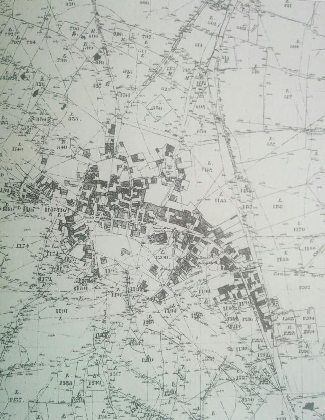 1860 MAJADAHONDA.jpg