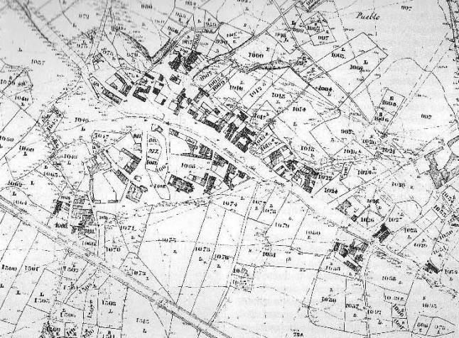 1860-70 rozas 15.jpg