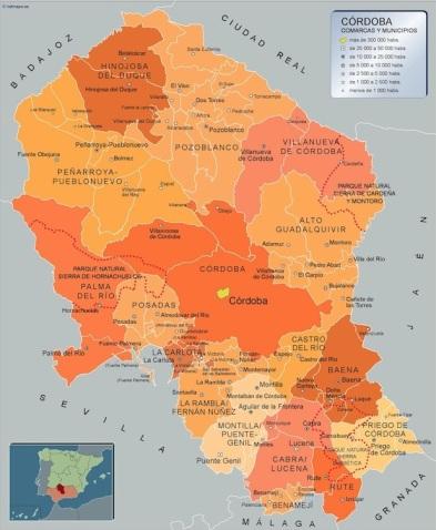 Mapa-Municipios-Cordoba.jpg